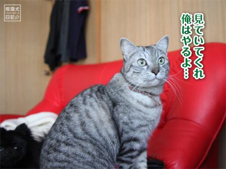 20110528_青春ドラマ風3