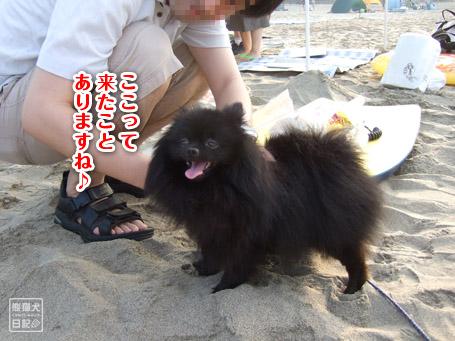 20110817_伊豆ツアー4