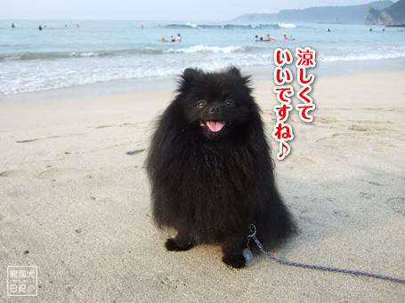 20110817_伊豆ツアー8