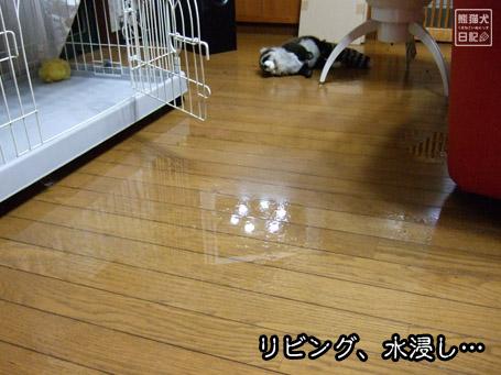 20110922_台風被害5