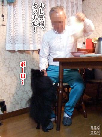 20111102_親父、真熊を溺愛3