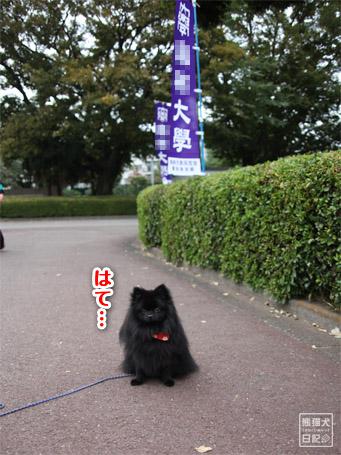 20111107_ここはどこ?2