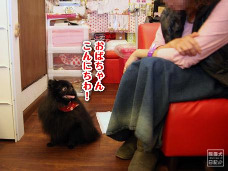 20111122_公家眉毛3