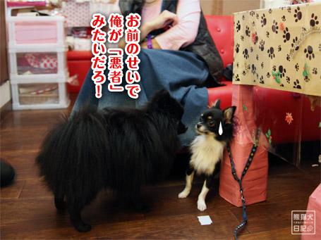 20111122_公家眉毛9