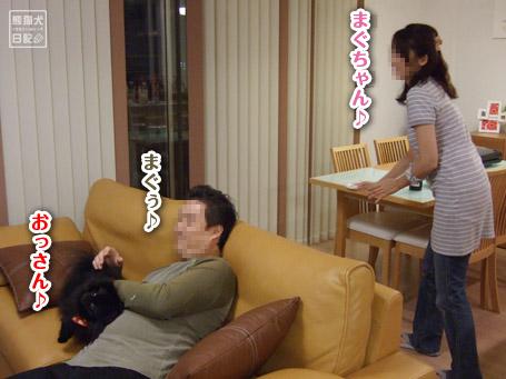 20111128_単身お泊りツアー1