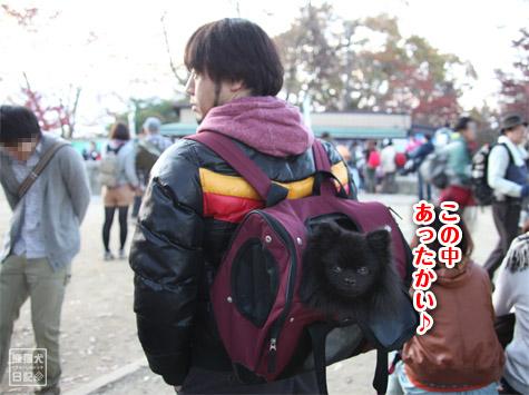 20111208_高尾山の頂上2