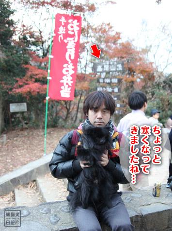 20111208_高尾山の頂上11