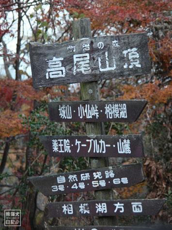 20111208_高尾山の頂上12