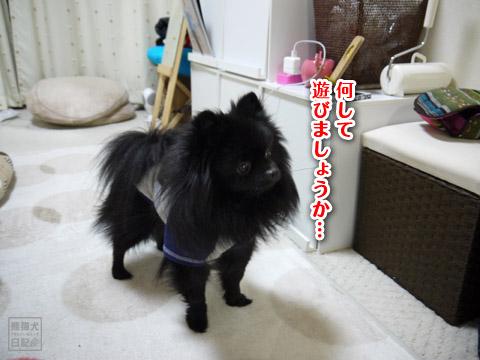 20120206_単身お泊りツアー5