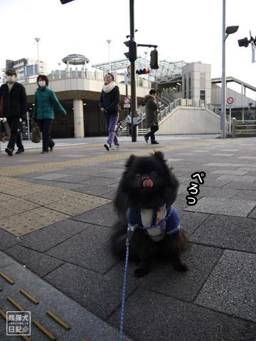 20120206_単身お泊りツアー8