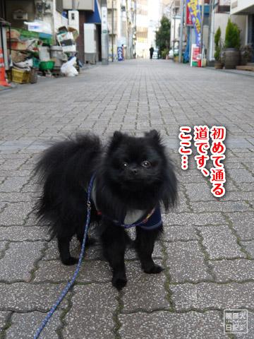 20120206_単身お泊りツアー7