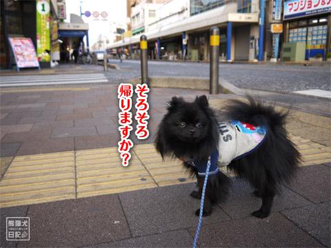 20120207_真熊の単身お泊りツアー12