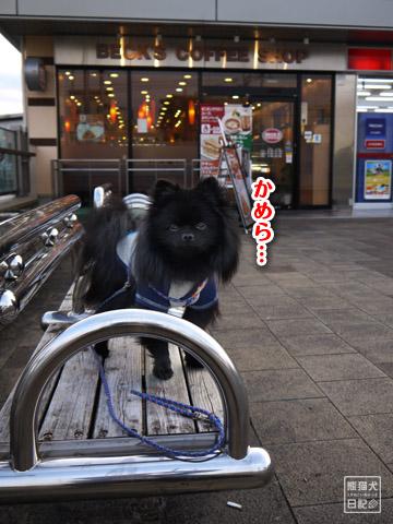 20120207_真熊の単身お泊りツアー10