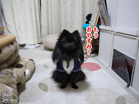 20120208_単身お泊りツアー4