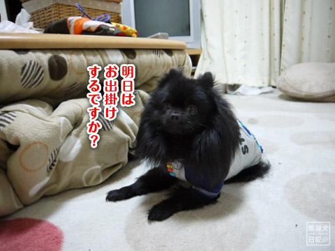 20120208_単身お泊りツアー3