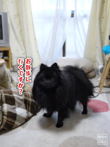 20120208_単身お泊りツアー9