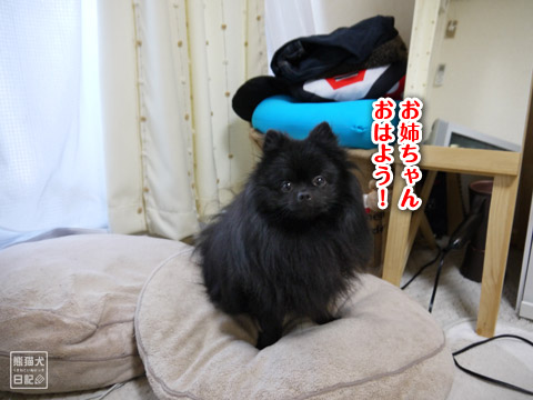 20120208_単身お泊りツアー8
