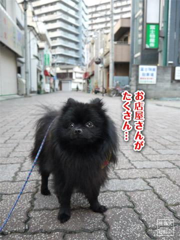 20120208_単身お泊りツアー10