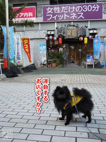 20120208_単身お泊りツアー13