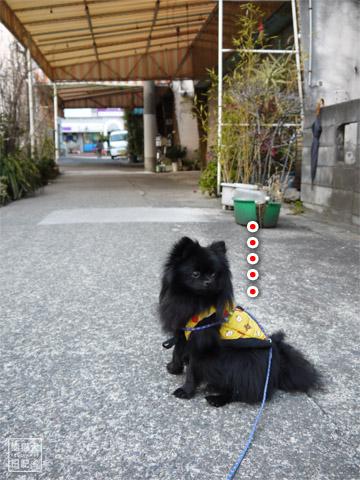 20120208_単身お泊りツアー16