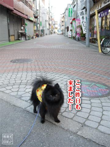 20120208_単身お泊りツアー12