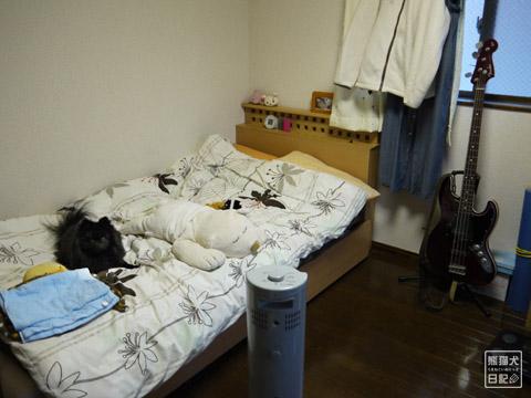20120209_真熊の単身お泊りツアー5