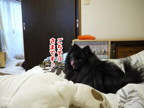 20120209_真熊の単身お泊りツアー4