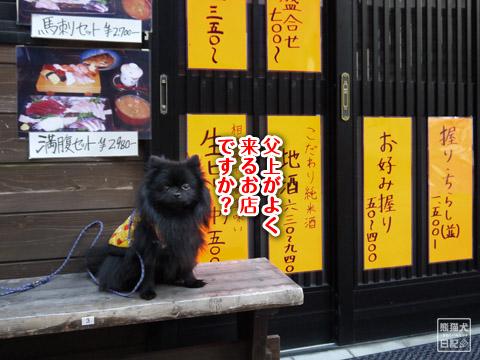 20120209_真熊の単身お泊りツアー2
