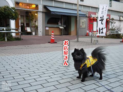20120209_真熊の単身お泊りツアー9