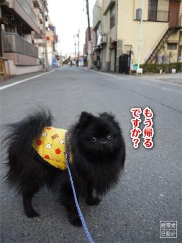 20120209_真熊の単身お泊りツアー11