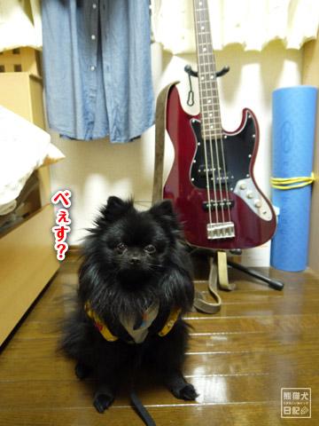 20120209_真熊の単身お泊りツアー16