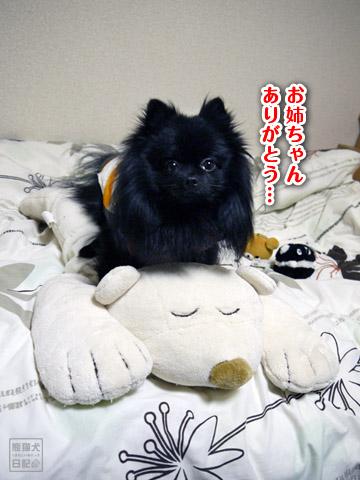 20120209_真熊の単身お泊りツアー21
