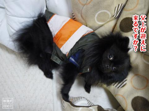 20120209_真熊の単身お泊りツアー19