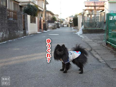 20120211_夕暮れ真熊1