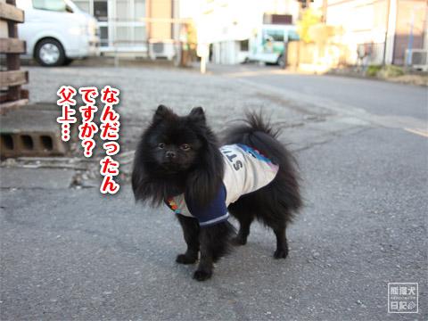 20120211_夕暮れ真熊8