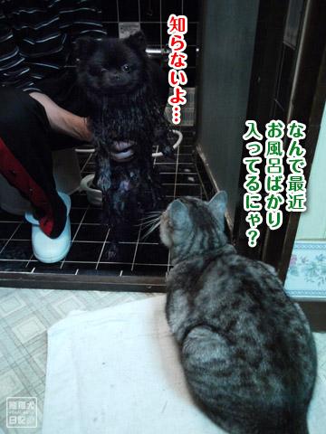 20120216_今日もお風呂3