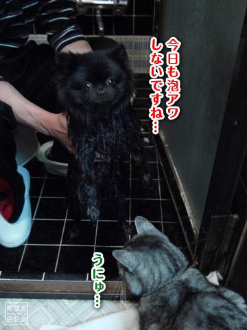 20120216_今日もお風呂2