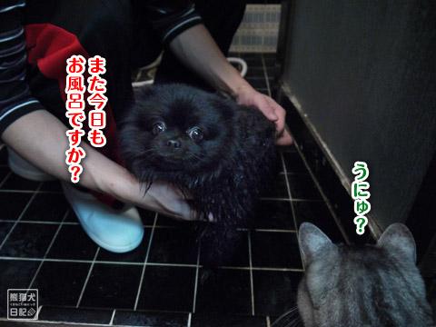 20120216_今日もお風呂1
