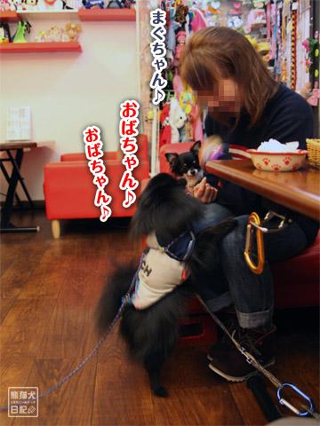 20120217_久々のカフェ6