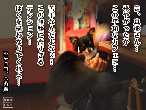20120217_久々のカフェ7