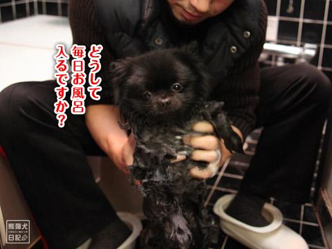 20120220_お風呂3