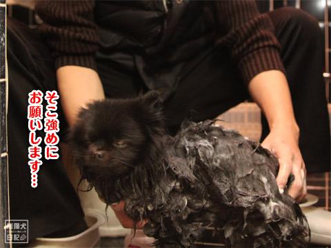 20120220_お風呂4