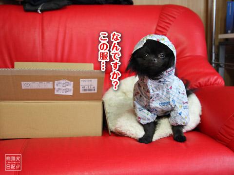 20120222_雨合羽2