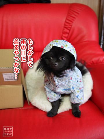 20120222_雨合羽4