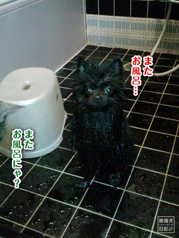 20120225_真熊風呂