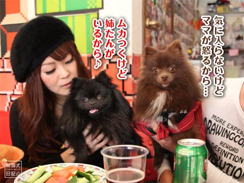 20120226_ちゃんちゃんこの会2