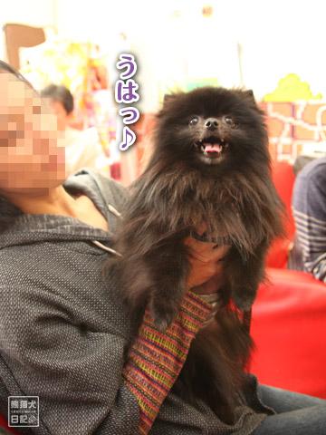 20120228_ちゃんちゃんこ9