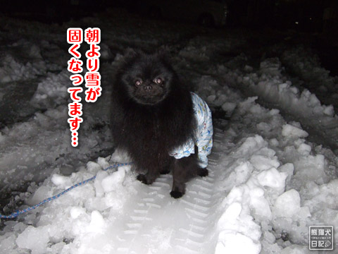 20120301_大雪6
