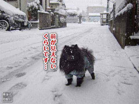 20120301_大雪3