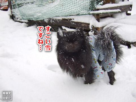 20120301_大雪2